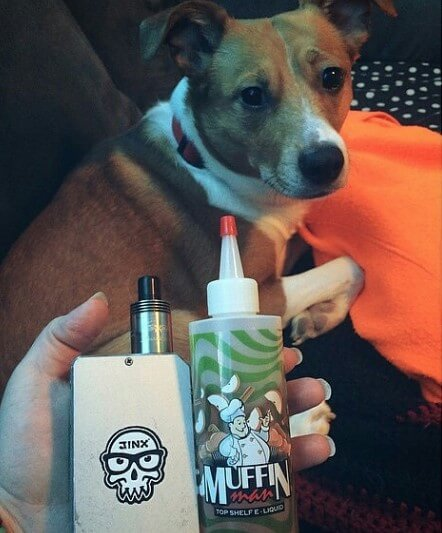 Dog and vape